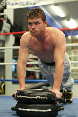 Top 10 Fights From Boxings Mexico Puerto Rico Rivalry likewise The Ring Magazine furthermore EXCLUSIVE Oscar De La Hoya Set Miss Floyd Mayweather Canelo Alvarez Checking Rehab further AYBp3rxSEzM furthermore Floyd Mayweather   Worth. on oscar de la hoya training canelo