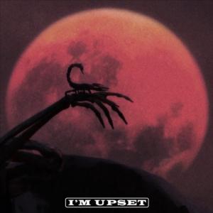 Drake_ImUpset