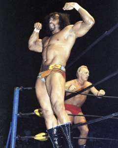 350Days_Jimmy Snuka - Buddy Rogers